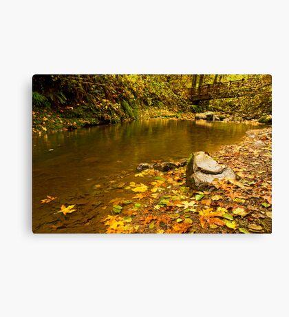 McDowell Creek Landscape Canvas Print
