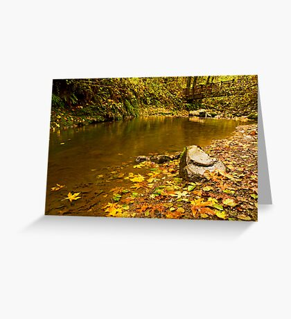 McDowell Creek Landscape Greeting Card