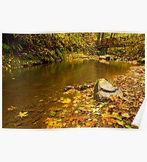 McDowell Creek Landscape Poster