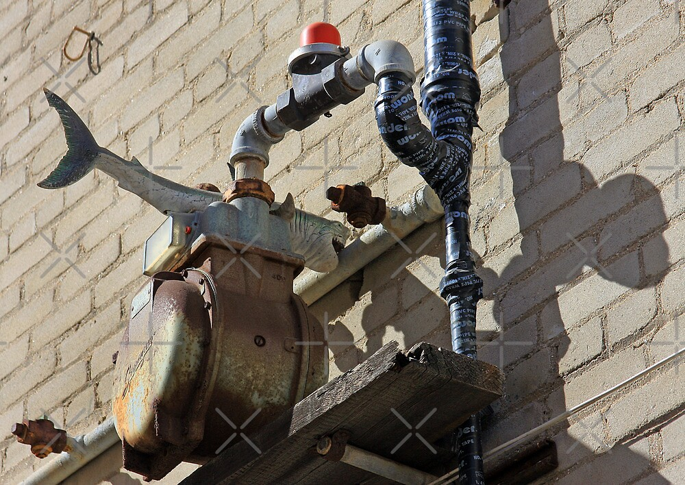 Shark Attacks Pipe! by CarolM