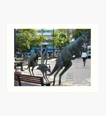 Kangaroos in downtown Perth, Western Australia Art Print