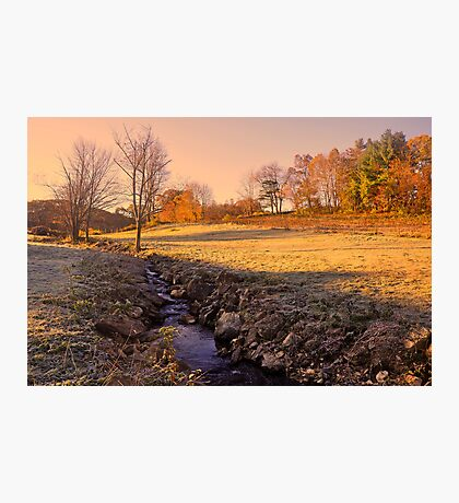 Fall Morning  Photographic Print