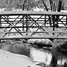 Walking Bridge and Fresh Fallen Snow by Bo Insogna