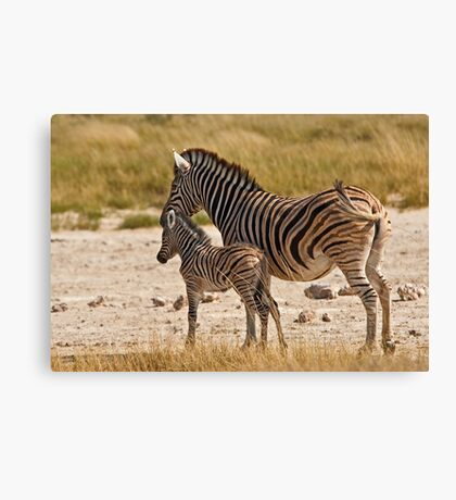 Mother care (IV) Canvas Print