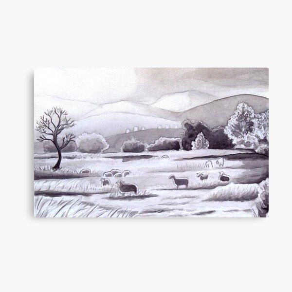 Countryside Charming Sheep in Ibiza Canvas Print