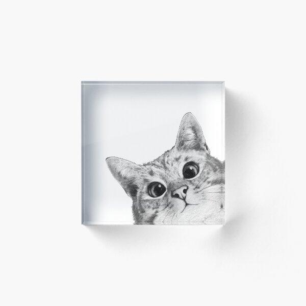 sneaky cat Acrylic Block