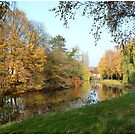 Autumn river scenery by Beatminister