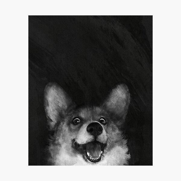 Sausage Fox Photographic Print