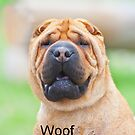 Woof - IPhone Case by DigitallyStill