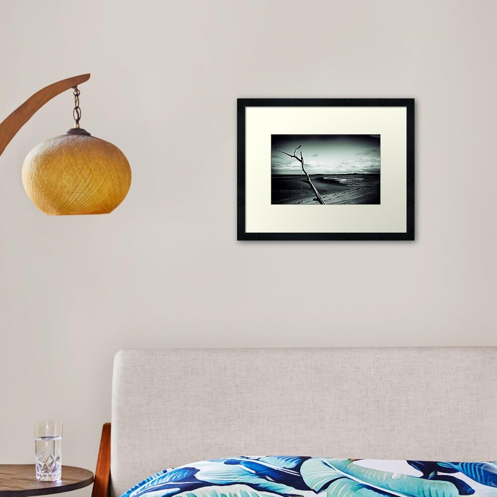 Rope Tree Beach 2 Framed Art Print