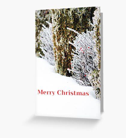 christmas chills Greeting Card
