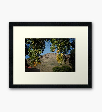 Golden Colorado Framed Print