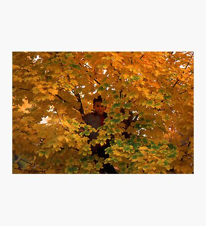 Boy in Tree Photographic Print