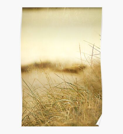Foggy Day at the Beach Poster