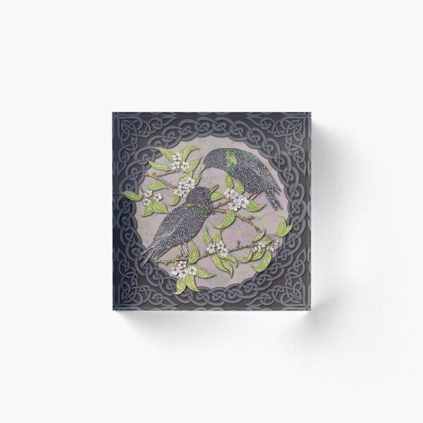 Celtic Starlings Acrylic Block