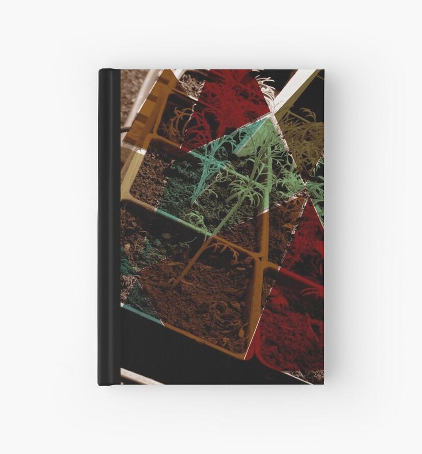 Veggielution Greenhouse Prism by Michelle  Domocol