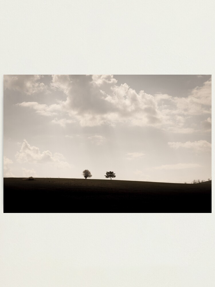 Alternate view of Trees on a hill Photographic Print