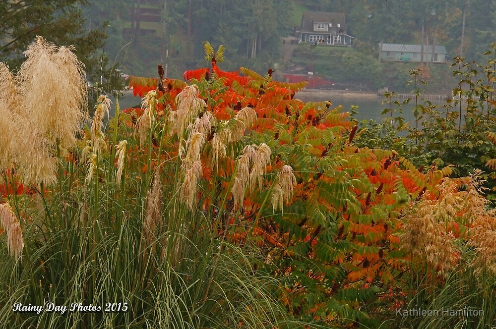 Beauty in abundance by Rainydayphotos