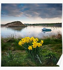 Spring Evening Alnmouth Poster