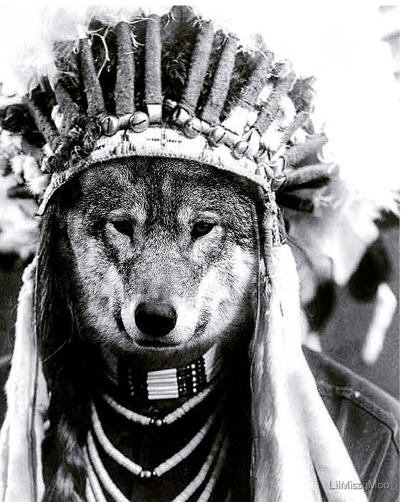 Native American Wolf  by LilMissyMoo