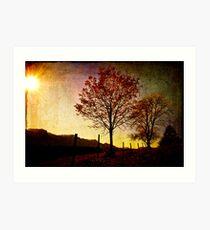 Quiet Autumn Walk ~ Austria, Europe Art Print