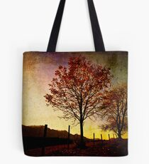 Quiet Autumn Walk ~ Austria, Europe Tote Bag