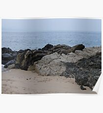 Volcanic zone -  Bay of Banderas Poster
