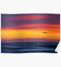 Gliding out to Sea Poster