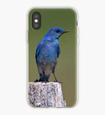 Black-eyed Beauty iPhone Case iPhone Case