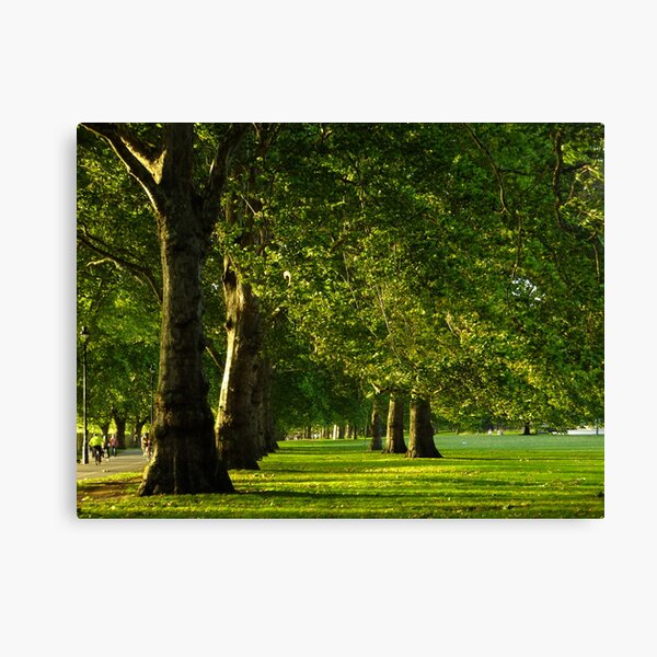 Hyde Park Green Alley Canvas Print