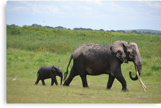 Mum and baby Elephant by PeneJane