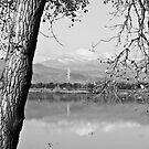 Colorado Twin Peaks Reflections in Black and White by Bo Insogna