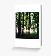 In Characteristic Form Greeting Card