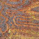 Desert Tracks by Marguerite Foxon