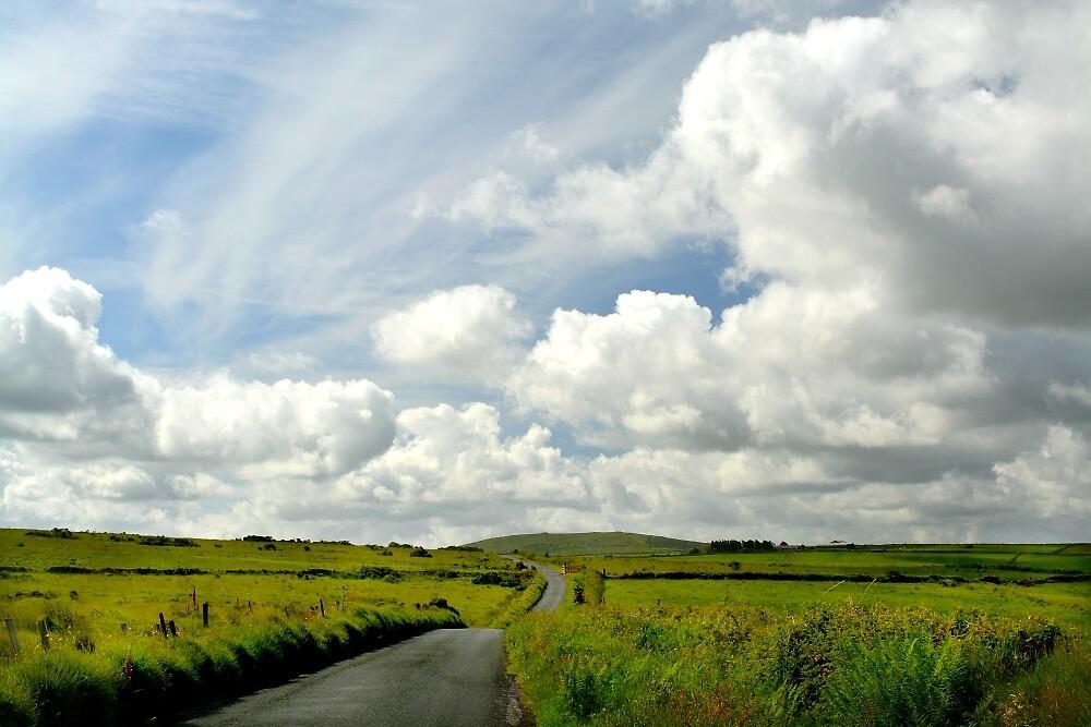 On Bodmin Moor by Alexandra Lavizzari