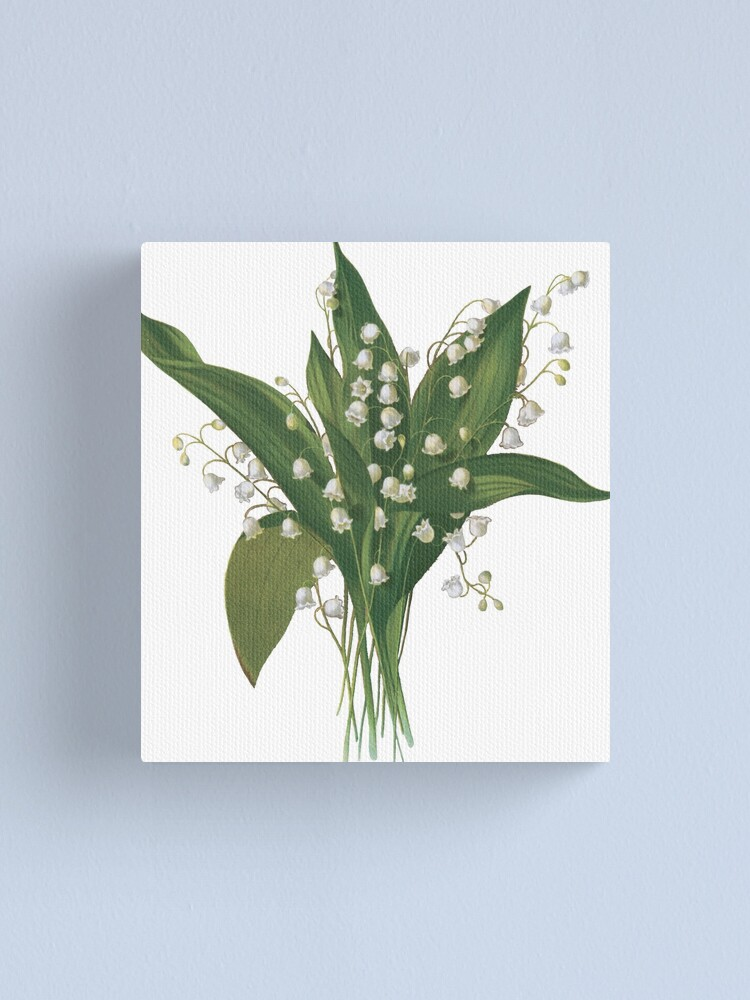 Home Decor C Poster Wall Art Lily Of The Valley Bouquet Art//Canvas Print