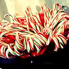 candy cane family by sarahb03