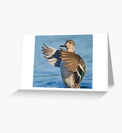 Flapping Female  Greeting Card