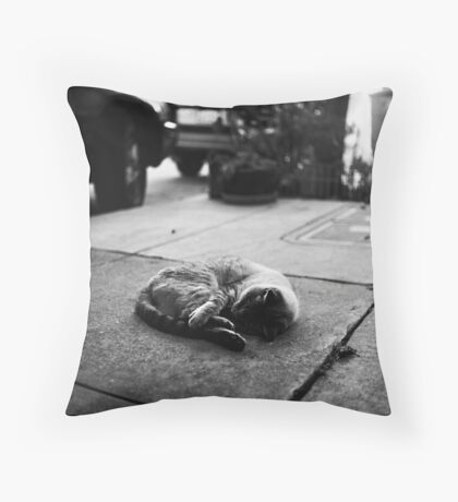 Liberty Street Throw Pillow