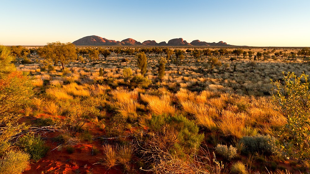 Sunrise at The Olgas by Russell Charters
