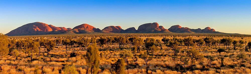 Sunrise at The Olgas Panorama by Russell Charters