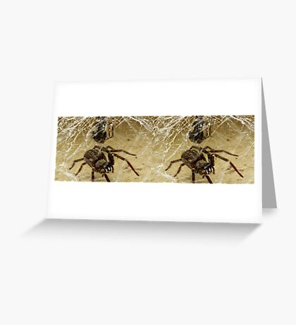 Spider (stereo image) Greeting Card