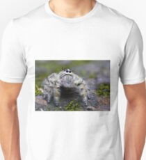 Hairy Jumping Spider Unisex T-Shirt