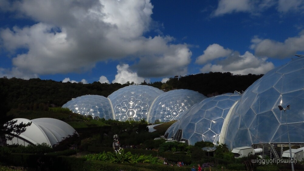 Biospheres, The Eden Project, Cornwall by wiggyofipswich
