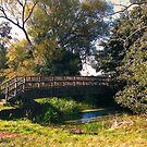 Countryside Bridge by Joanna Jeffrees
