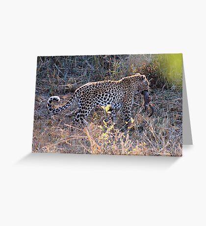 JUST A TINY BITE TO EAT ! - THE LEOPARD – Panthera pardus Greeting Card