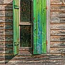 HALF SHUTTERED WINDOW by RGHunt
