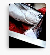 Kill fish! Canvas Print