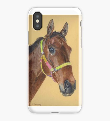 Thoroughbred Portrait iPhone and iPod Cases iPhone Case