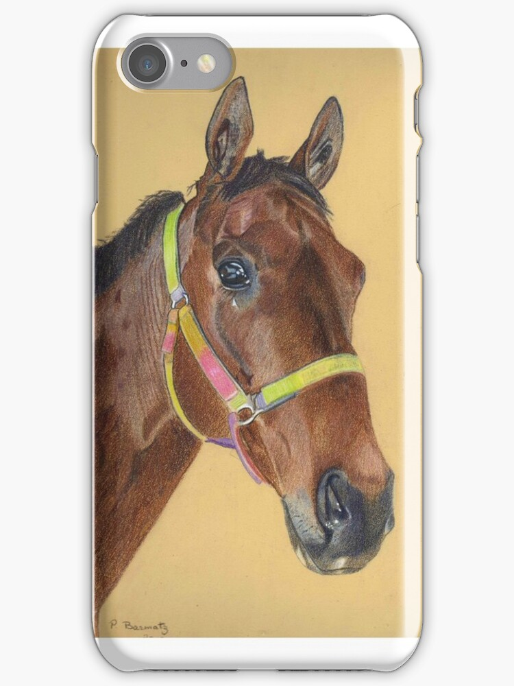 Thoroughbred Portrait iPhone and iPod Cases by Patricia Barmatz